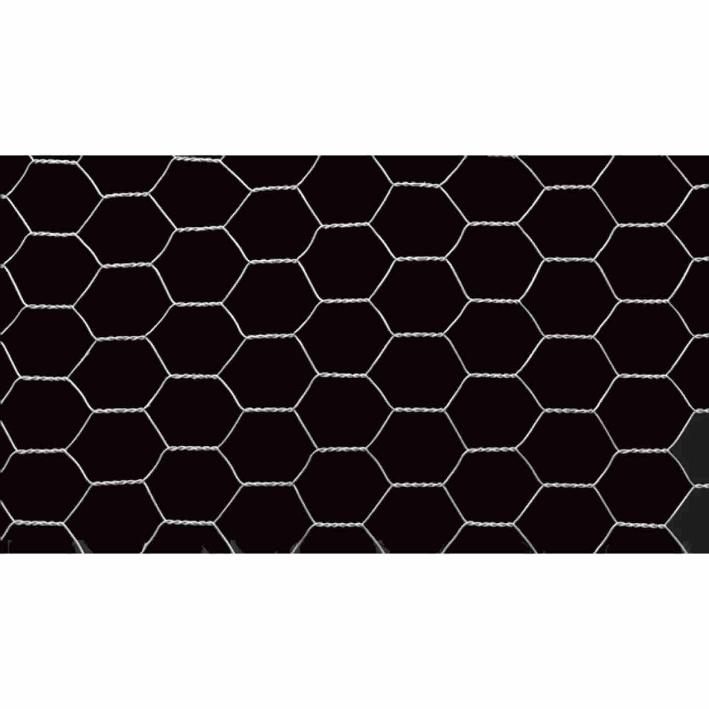 Do it 1 In. x 60 In. H. x 150 Ft. L. Hexagonal Wire Poultry Netting Image 3